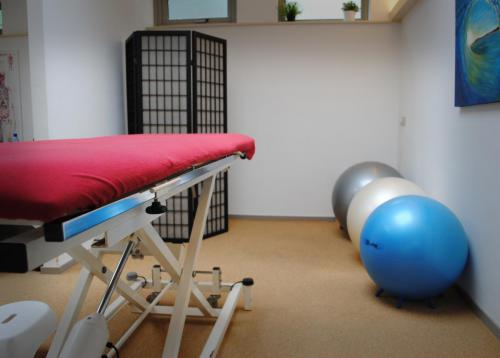 Fysiotherapie & Cesartherapie Bussum praktijk binnenkant 1
