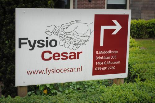 Fysiotherapie & Cesartherapie Bussum